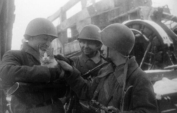 Ricordi di pace, Stalingrado 1943. - Sputnik Italia