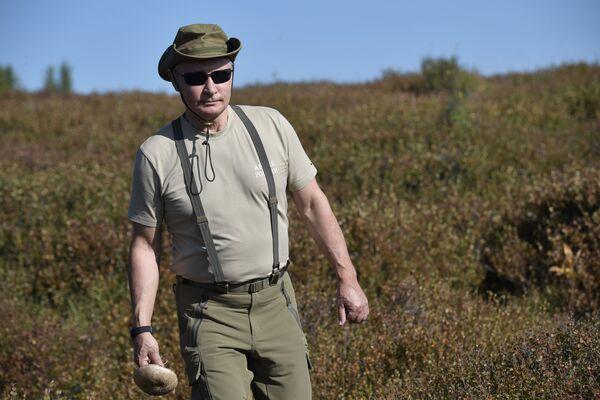 Il 26 agosto 2018 Putin è andato a raccogliere i funghi nella Repubblica di Tyva durante una vacanza. - Sputnik Italia