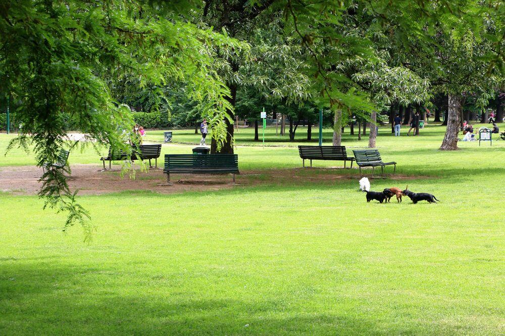 Un parco di Milano dopo l'inizio della Fase 2
