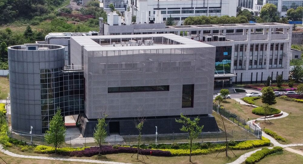Laboratorio P4 dell'Istituto di Virologia di Wuhan