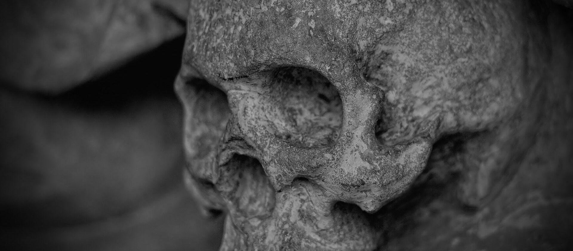 Skull - Sputnik Italia, 1920, 09.01.2021