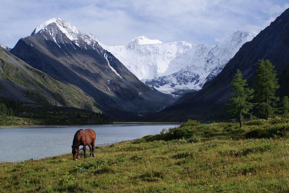Il monte Belucha in Altai