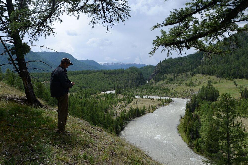 Il fiume Argut in Altai.