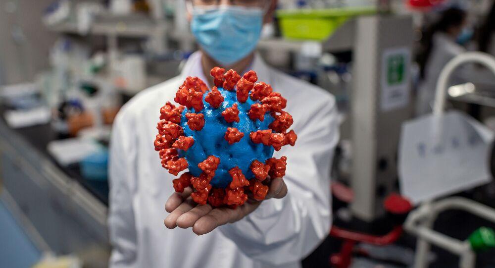 Ricercatore mostra modello in plastica del coronavirus