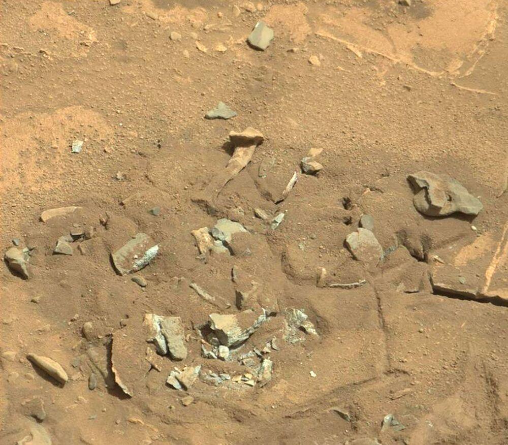 Nel 2014, il rover Curiosity ha fatto una foto che mostra una roccia molto strana, che sembra una coscia umana