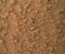 Il rover Mars della Curiosity della NASA ha fotografato su Marte diversi oggetti misteriosi la cui origine ha suscitato un notevole interesse tra i non esperti