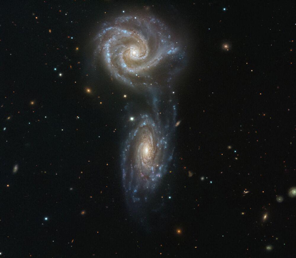 Galassie spirali interagenti NGC 5426 e NGC 5427.