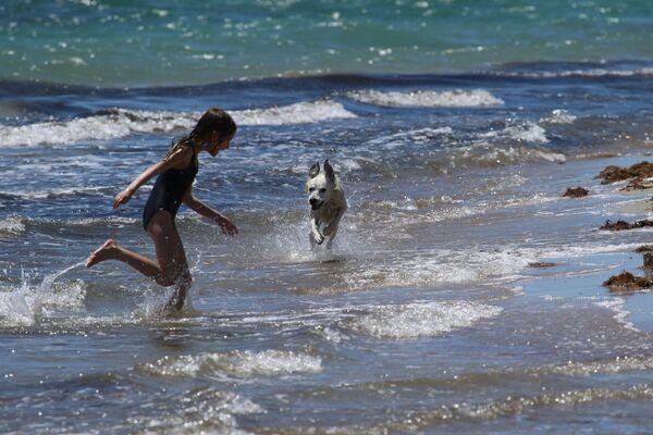 Una ragazza gioca con un cane sulla spiaggia di Yevpatoriya, Crimea - Sputnik Italia