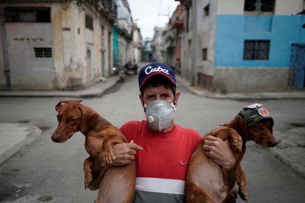 Roberto Gonzalez e i suoi bassotti davanti alla sua casa nel centro dell'Avana, Cuba - Sputnik Italia