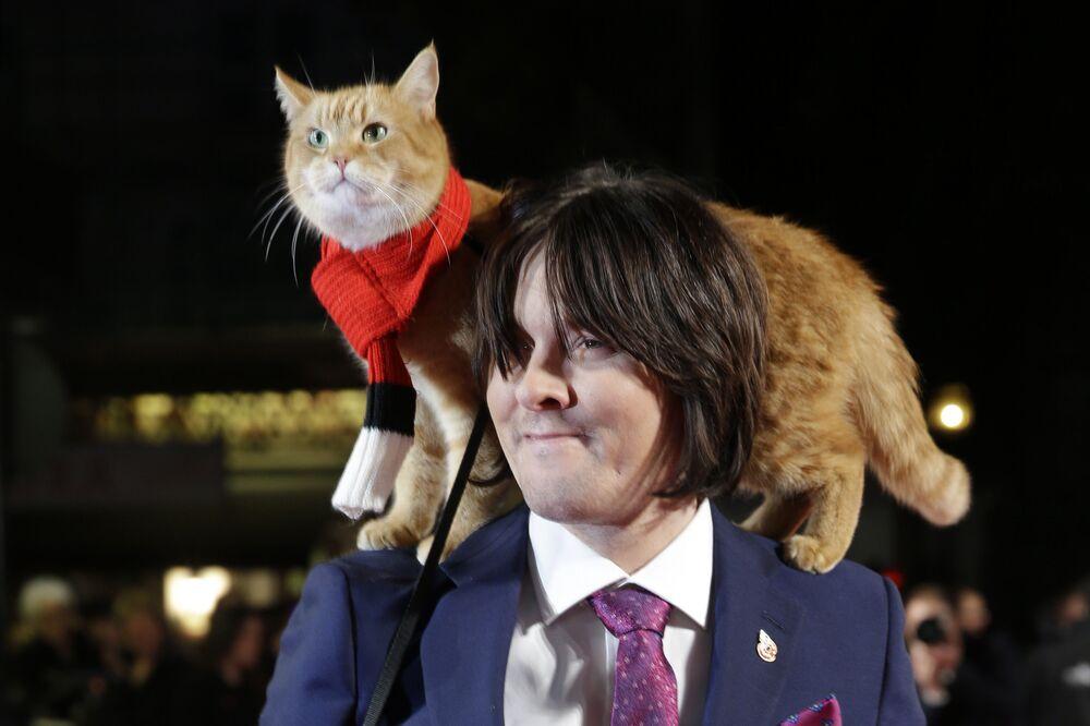 James Bowen con il suo gatto Bob
