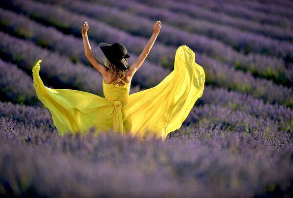 Una ragazza in un campo di lavanda in Crimea. - Sputnik Italia