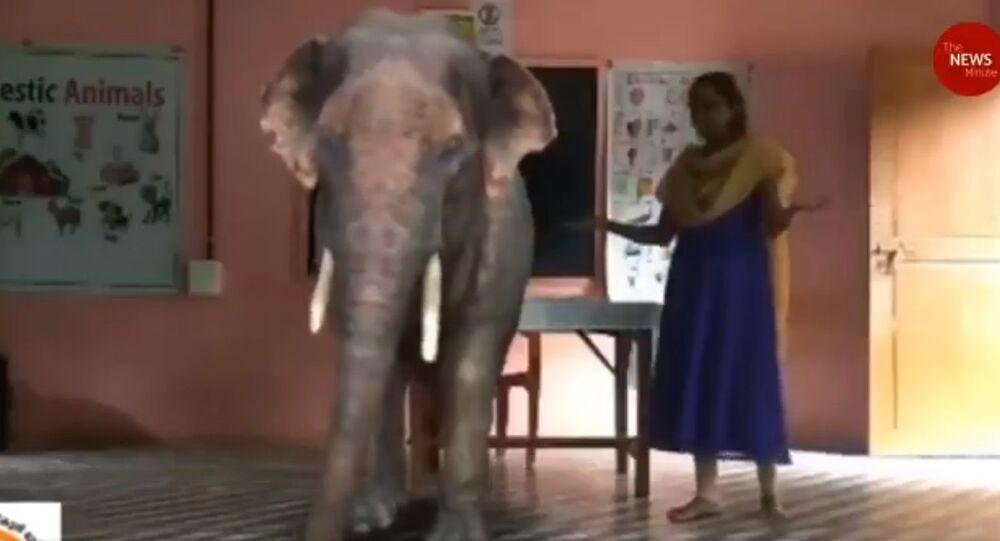 Scuola indiana utilizza la realtà aumentata nelle lezioni online!