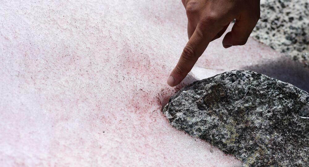 I ghiacciai rosa