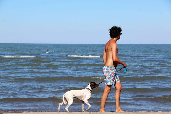 Un uomo con cane sulla spiaggia in Italia - Sputnik Italia