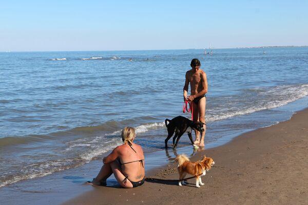 Le persone con cani al mare, Italia - Sputnik Italia