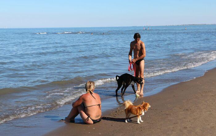 Le persone con cani al mare, Italia