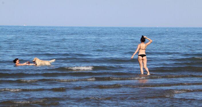 Le donne con cane al mare, Italia