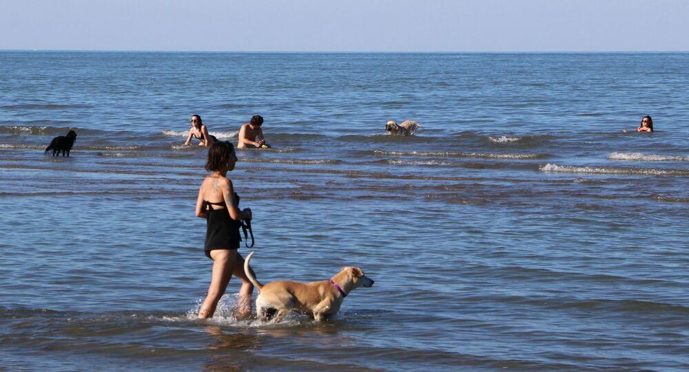 Una donna con cane al mare in Italia