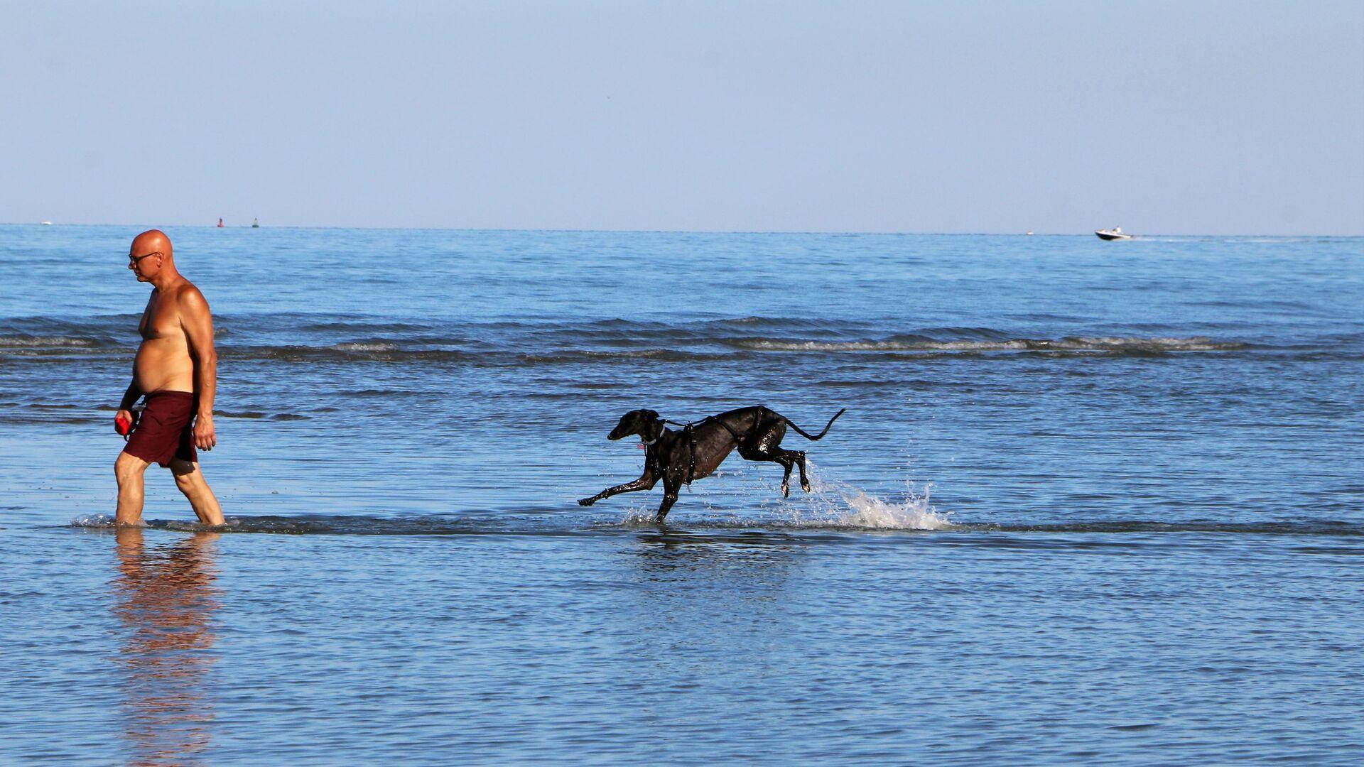 Un uomo con cane al mare in Italia - Sputnik Italia, 1920, 08.06.2021