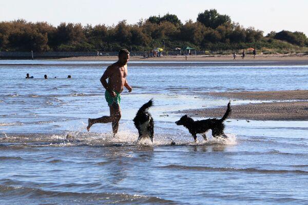 Un uomo con i cani al mare in Italia - Sputnik Italia