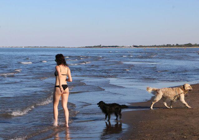 Una ragazza con i cani su una spiaggia in Italia