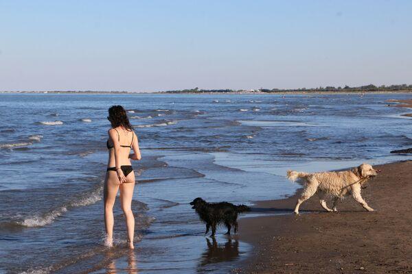Una ragazza con i cani su una spiaggia in Italia - Sputnik Italia